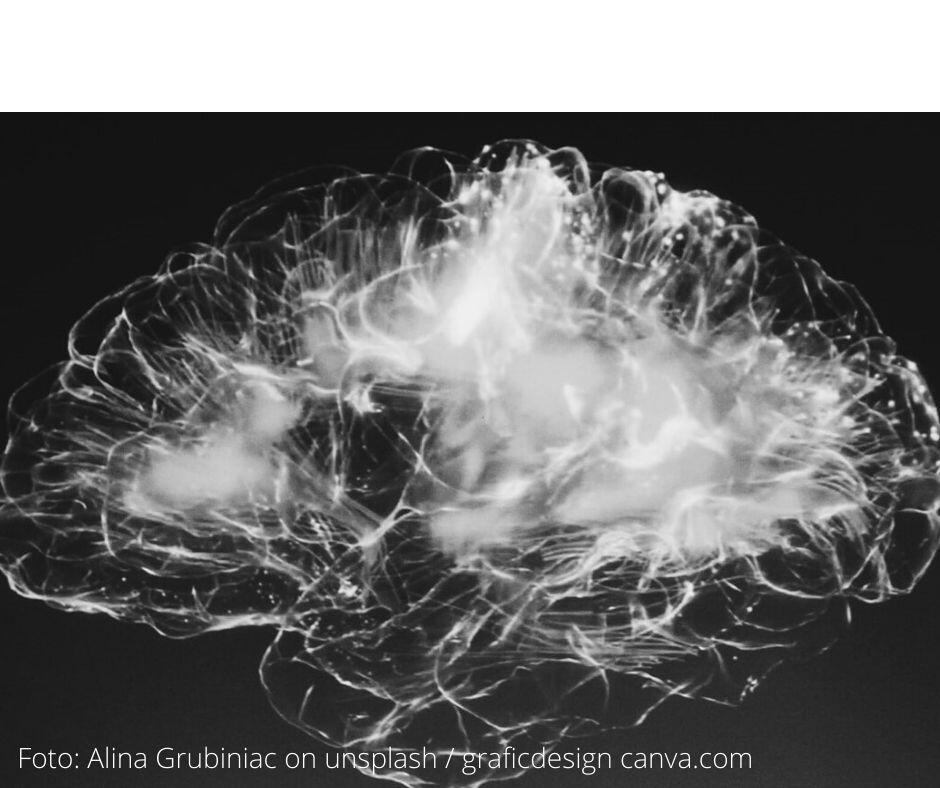 Wenn man richtig genießt, geht in den Netzwerken des Gehirns das Licht an. Von Dopamin bis Serotonin, von Noradrenalin bis Oxytocin, Endorphinen und- egal wie die Glücksboten sonst noch heißen- wird alles aufgeboten, um in verschiedenen Hirnarealen ein wahres Feuerwerk zu zünden, das schließlich seine glücklich machende Wirkung körperlich entfaltet. Mehr dazu in diesem Beitrag.