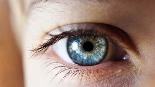 Besonders wenn man am Bildschirm arbeitet, ist die Blickpause eine wichtige Abwechslung fürs Auge. Wie sie funktioniert und welche Möglichkeiten für Mikropausen es sonst noch gibt , erfährst du hier.
